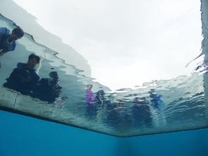 21世紀美術館プール